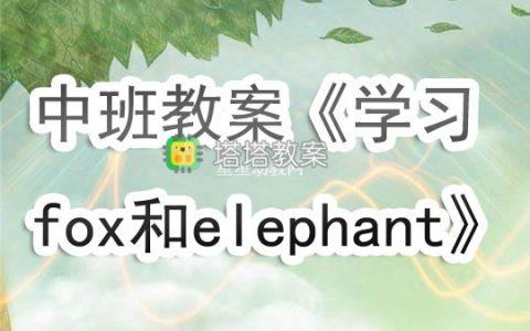 幼兒園中班教案《學習fox和elephant》含反思