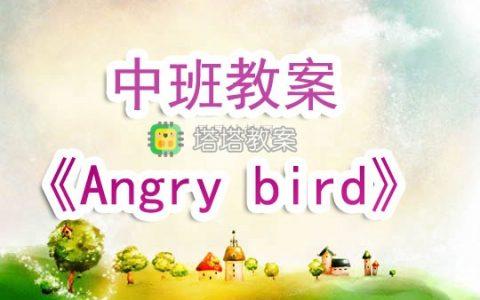 幼兒園中班教案《Angry bird》含反思