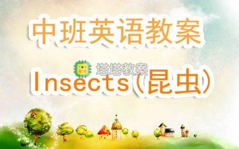 幼兒園中班英語教案《Insects(昆蟲)》