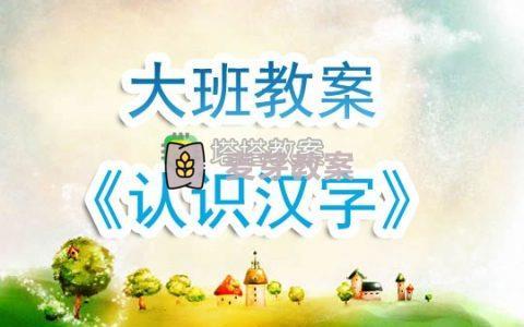 幼兒園大班教案《認識漢字》含反思