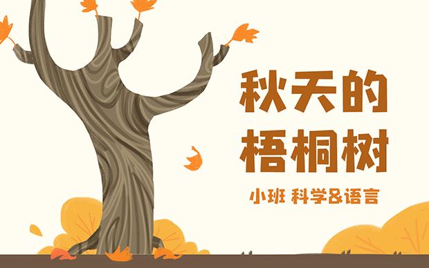 小班-秋天的梧桐樹PPT教學教案